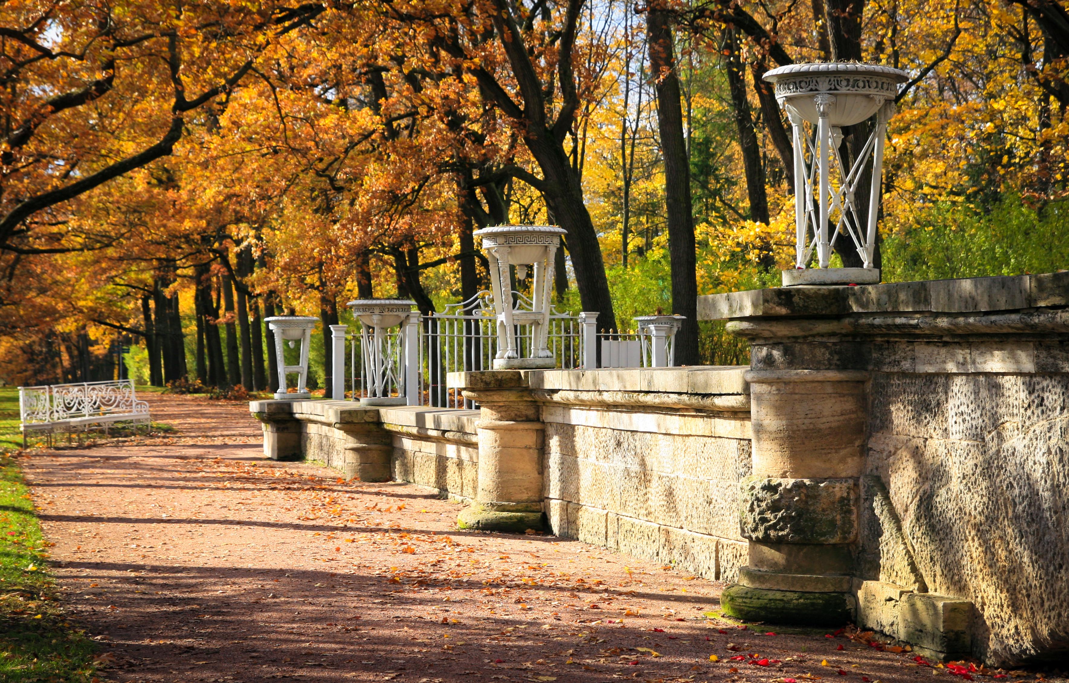 Dreamstime © - Saint-Pétersbourg - Tsarskoe Selo.jpg