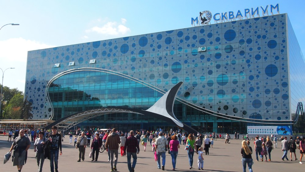 Picture: The Moskvarium ‒ the largest and the best oceanarium in Moscow